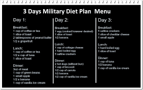 3 days military diet plan does it work