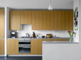 Plywood Cabinets Kitchen 44 Best Bach Kitchen Images On Pinterest Kitchen Ideas Plywood