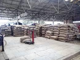 vashi market navi mumbai no takers for onions at apmc despite price drop news
