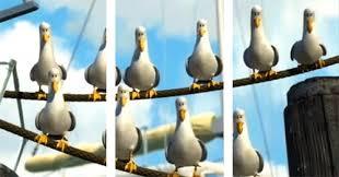Finding Nemo Seagulls Meme - nemo seagulls mine gif on imgur