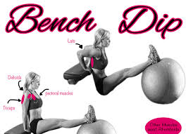 Triceps Bench Dips Fitness Tip Tuesday Triceps Bench Dip Exercises For Women