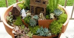 planter design succulent planter to make awesome indoor garden homesfeed