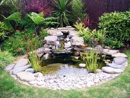 small garden pond gardening ideas