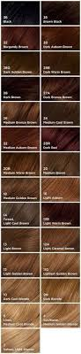 clairol professional flare hair color chart best 25 clairol hair dye ideas on pinterest professional hair