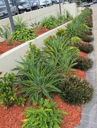 nice and simple the front yard pinterest nice gardens and