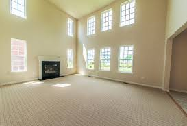could you share the wall color and type of carpet