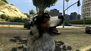 australian shepherd jobs gta v australian shepherd gameplay youtube