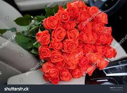 big bouquet of roses big bouquet beautiful roses luxury stock photo 193020800