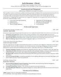 Project Manager Resume Tell The Company Or Organization Resumes For Project Managers Resume And Knights Bot In