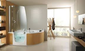 shower admirable best walk in tub shower combination top