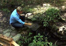 Clemson Botanical Garden by Clemson Botanist Goes National With Nature Tales