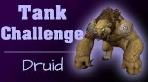 Challenge Guardian Tank Challenge Guardian Druid Nexxzz Jinni