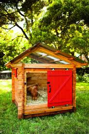 backyard chicken coops home outdoor decoration