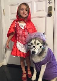 King Koopa Halloween Costume 25 Kids Dog Costume Ideas Boy