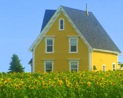 best 20 yellow cottage ideas on pinterest cottages tiny