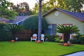 cura giardino cosa piantare ad ottobre in giardino e terrazzo