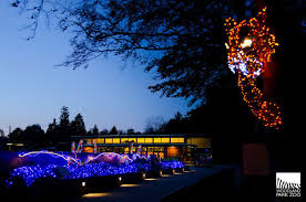 Zoo Lights Schedule by Woodland Park Zoo Vs Point Defiance Zoo