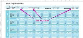 Diet Tracker Spreadsheet Weekly Weight Loss Spreadsheet Alyg