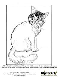 halloween kitten coloring pages alltoys for