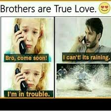 Brother Sister Memes - 32 best brosis images on pinterest quote true words and