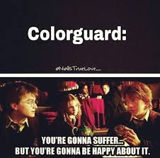 Color Guard Memes - i m in color guard and i have hit myself in the head about 10