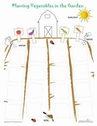 preschool plants animals u0026 the earth worksheets u0026 free printables