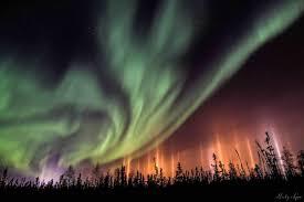 northern lights canada 2017 northwest territories churchill polar bears