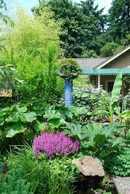 153 best the exotic garden images on pinterest exotic garden