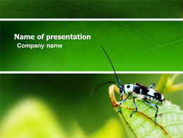 bug u0027s powerpoint template backgrounds 03347