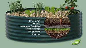 building a raised bed garden ecofilms