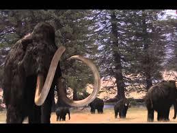 ebs global documentary mammoth titan ice age spot