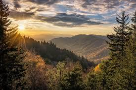 Kentucky Forest images First sunday nature hike kentucky living jpg