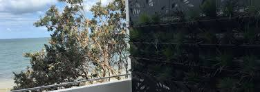laser cut decorative garden metal privacy screens brisbane