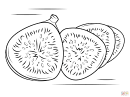 figs coloring pages free coloring pages