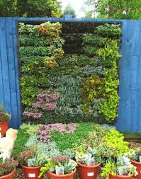 set your sights on vertical gardening u2013 the only way is up