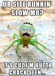 Sad Spider Meme - crack spider is sad meme on imgur