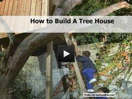building your own tree house how to build a house building a tree house jpg
