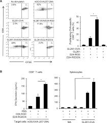 corey barton floor plans oncolytic adenovirus and tumor targeting immune modulatory therapy
