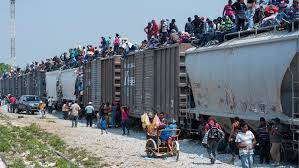 la bestia the cargo trains la bestia the dangerous journey of central