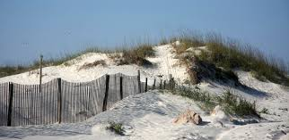 fernandina beach homes for sale property search in fernandina beach