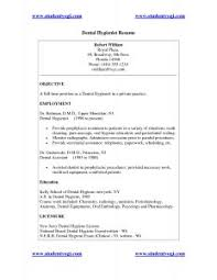 Example Of An Excellent Resume by Examples Of Resumes Sample Resume Format For Fresh Graduates Two