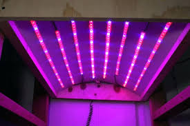 how much are led lights home depot led grow light how much are led grow lights picture of