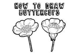 Draw A Flower Vase How To Draw Flowers Drawing Tutorials U0026 Drawing U0026 How To Draw