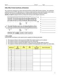 Dna Rna And Protein Synthesis Worksheet Dna Rna Protein Synthesis Mutation 9th Higher Ed Worksheet