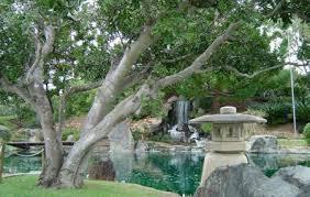Rockhton Botanic Gardens And Zoo Rockhton Zoo And Botanic Gardens Rockhton Reviews