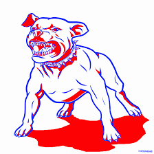 draw a pitbull dog step by step drawing sheets added by