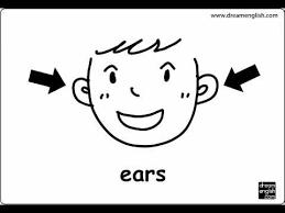 body parts let u0027s practice kids english youtube