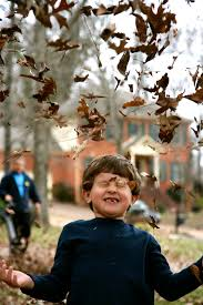 spirit halloween murfreesboro 50 things to do with your family in nashville this fall suburban
