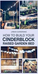 Raised Gardens For Beginners - how to build a wood raised bed garden for beginners simple and