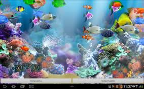 aquarium live wallpaper hd android apps on google play